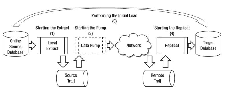 Basic Replication Steps
